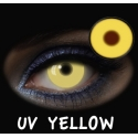 Fantasia Diaria UV Yellow 2u.