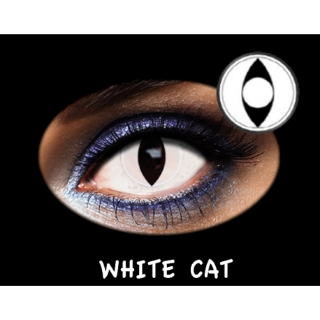 Fantasia Trimestral White Cat 2u.