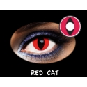Fantasia Trimestral Red Cat 2u.